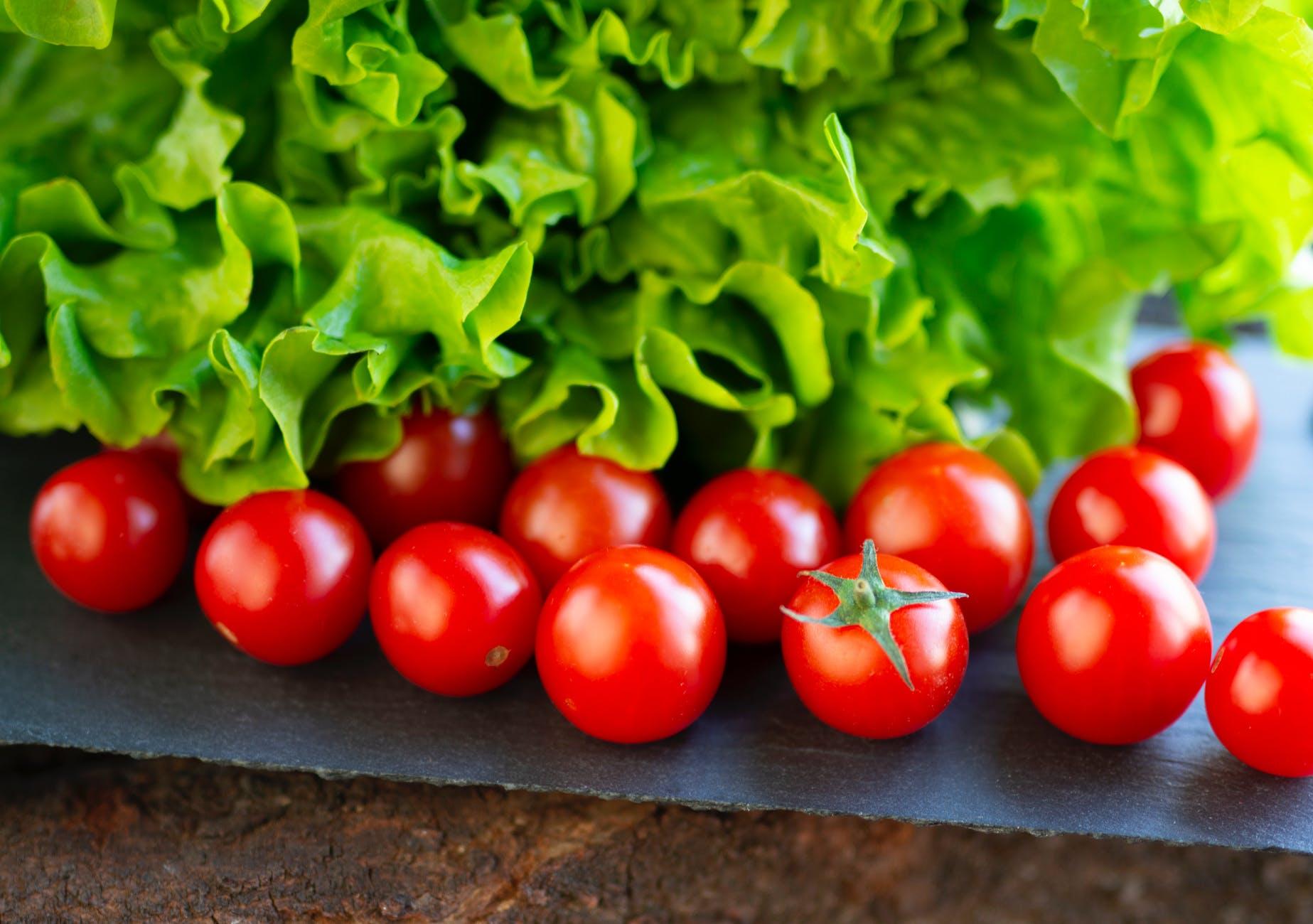 food salad healthy garden