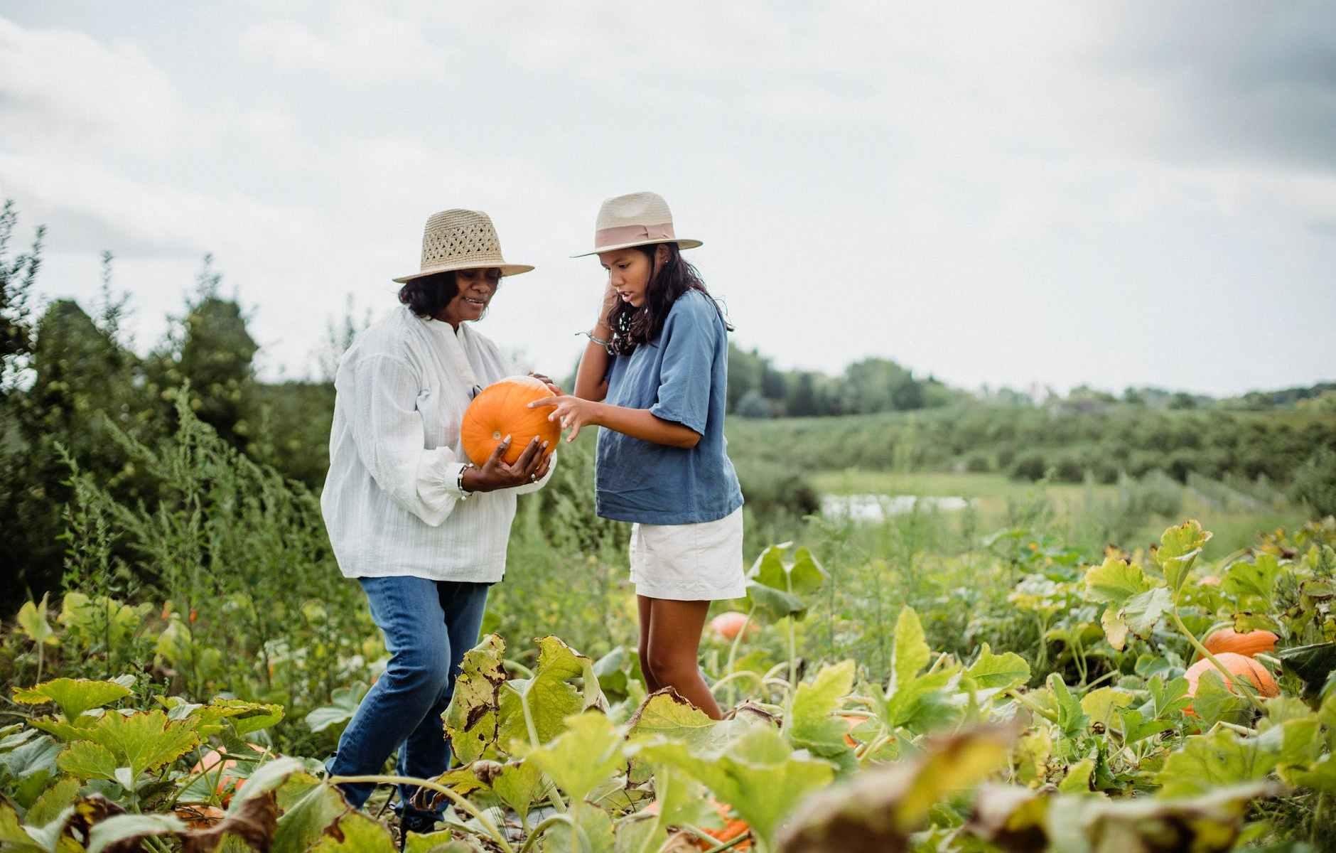 hispanic woman with young girl harvesting pumpkins