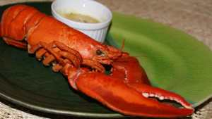 Picture of lobster dinner