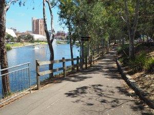 river-torrens-pathway-1511