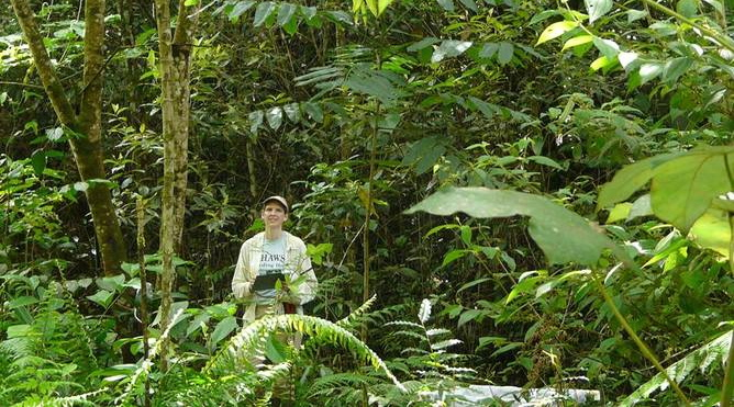 SUNY Professor Braves Perilous Costa Rica Rainforests For Climate Changing Discovery