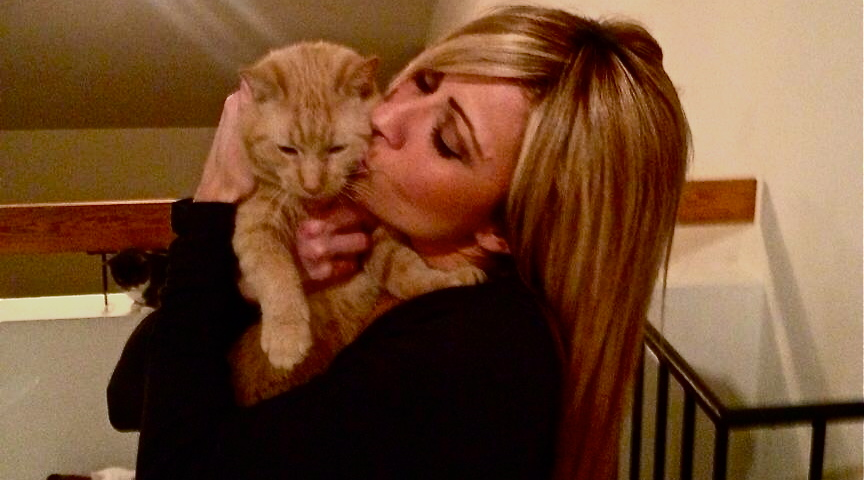 Why This Ossining Teacher, Volunteer is Proud to Be a 'Cat Lady'