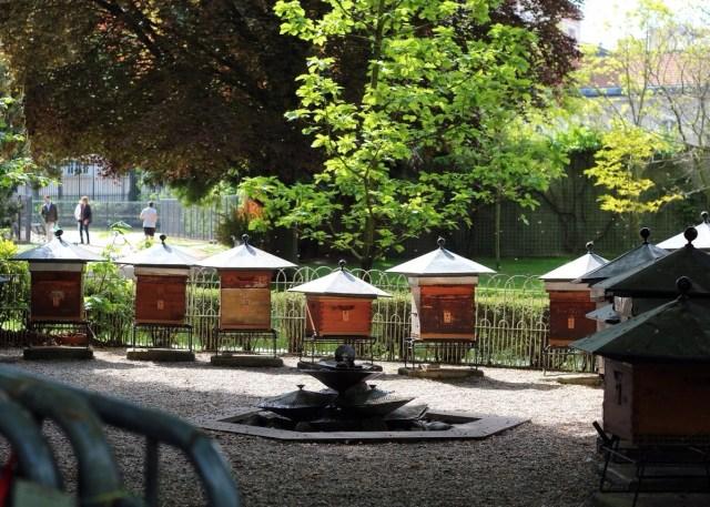 bees, beekeeping, Jardin du Luxembourg, Paris, France
