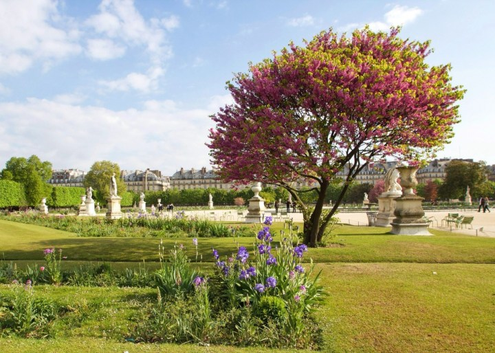 Tuileries, Paris, France
