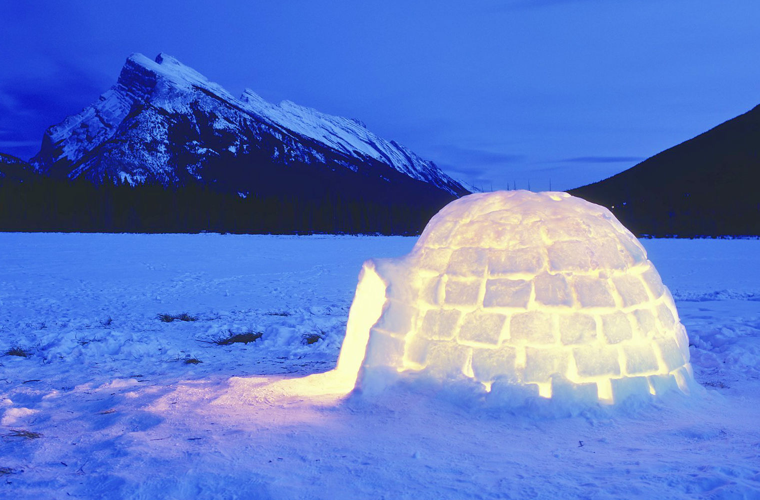 Igloo in Winter Wonderland