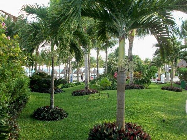 landscape-plan-front-yard-landscape-garden-landscape-fresh-landscaping-plants-central-florida