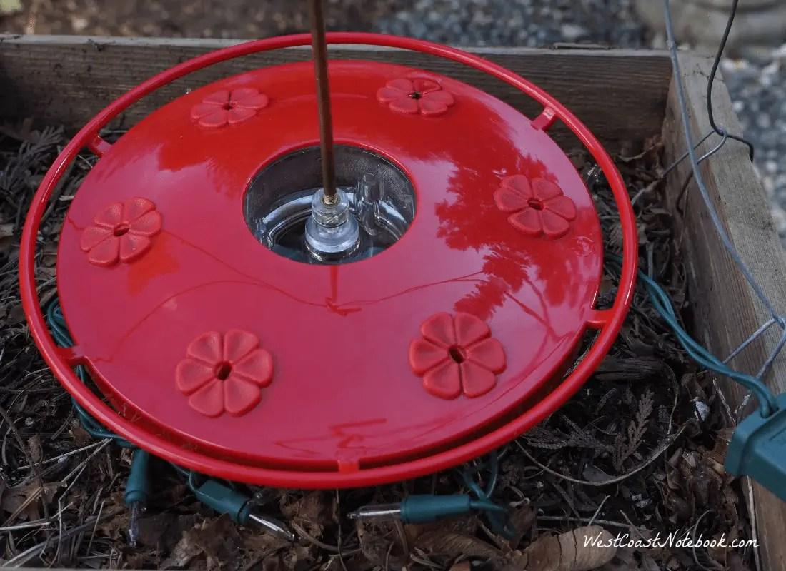 Set Hummingbird feeder on mini lights