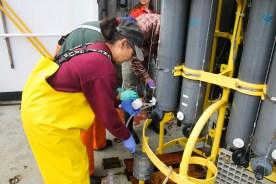 Linda Rhodes collects water from the CTD. Photo Credit: Meghan Shea