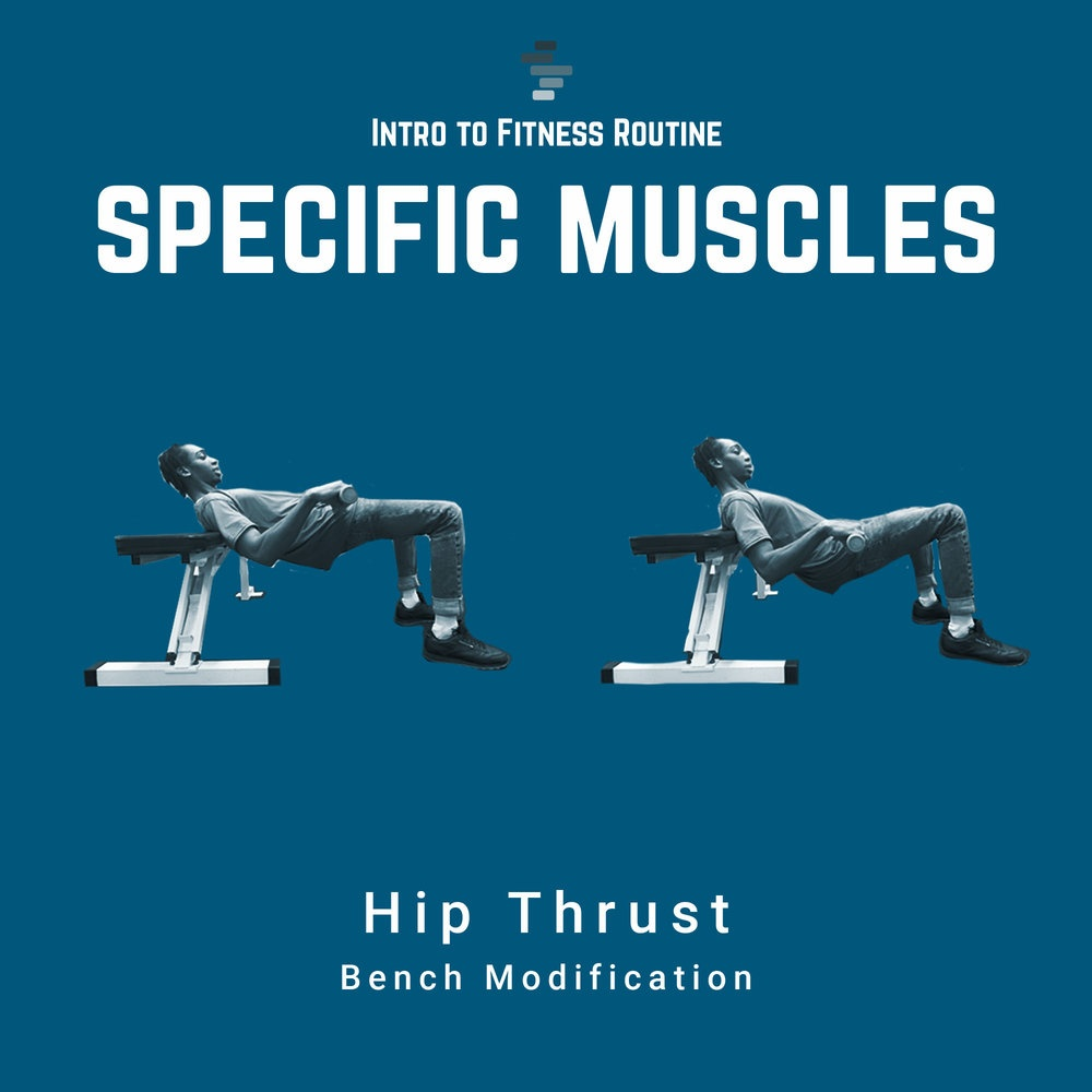 Hip Thrust Bench Modification