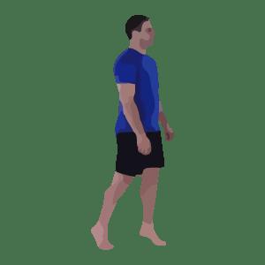 Toe Walks, Heel Walks