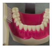 Austell Dentist