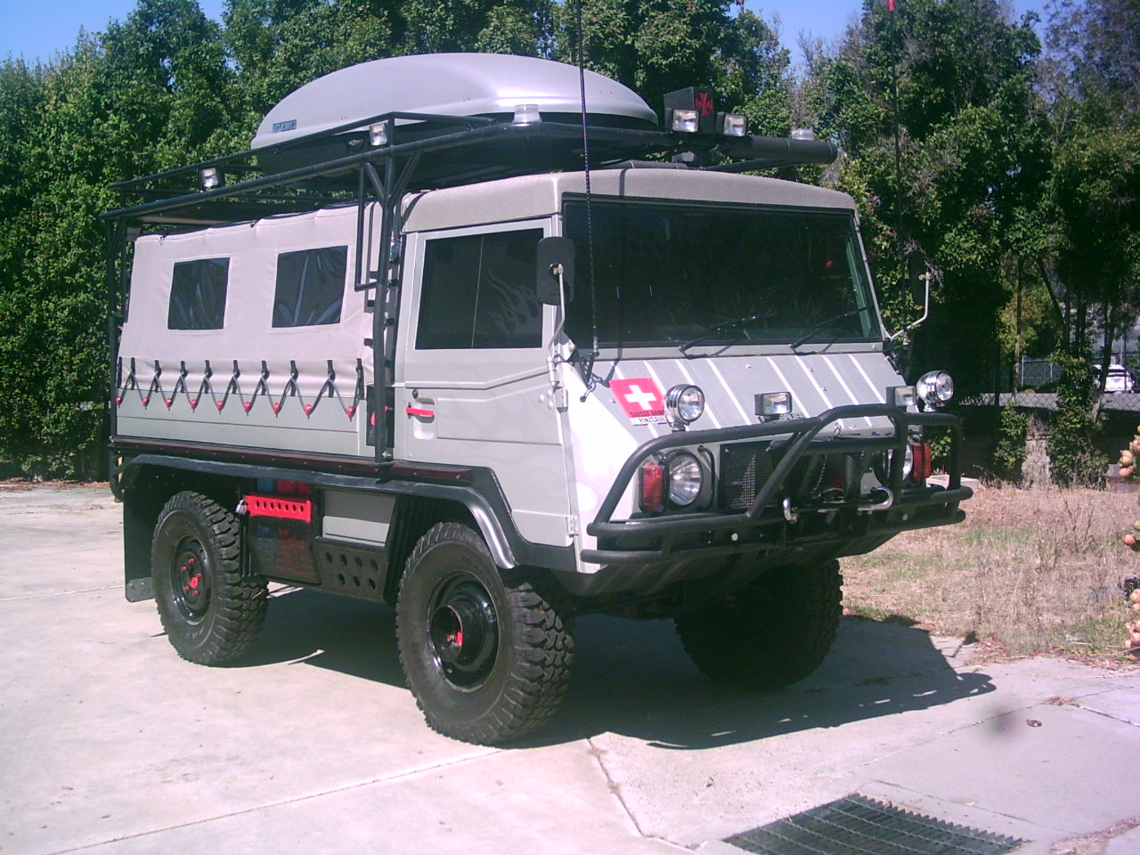 Pinzgauer Breeders Images - Reverse Search