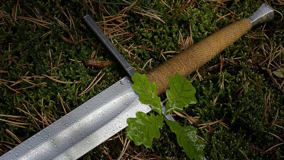 Sword: grass, weapon, sword, fauna, soil by wallup
