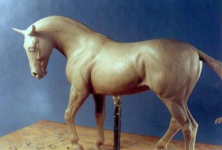CAPRICE sport horse