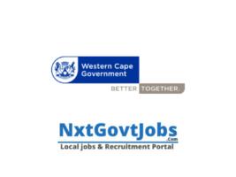 Western Cape Department of Social Development Vacancies 2021 | Social Development Department Government jobs Cape Town 2021