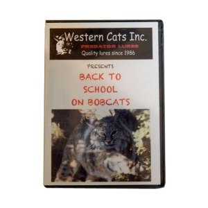 Back-to-school-on-bobcats