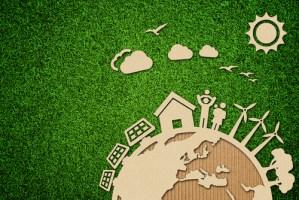 Cardboard communities illustrated over grass