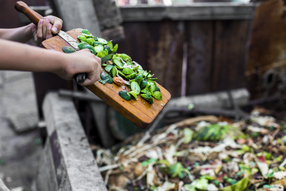 5 Reasons You Should Compost