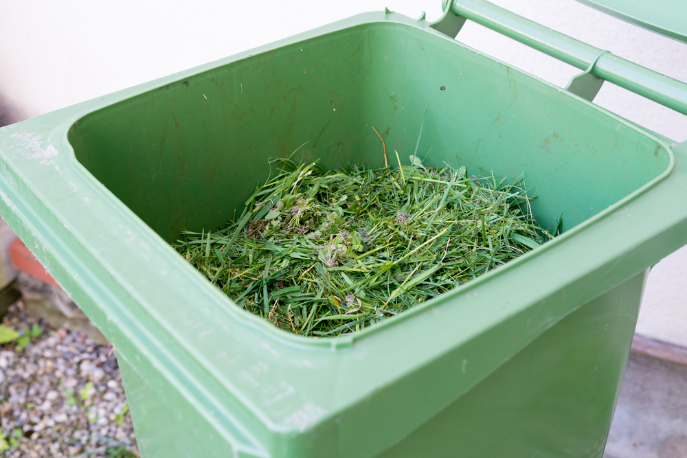 Dealing with Yard Waste