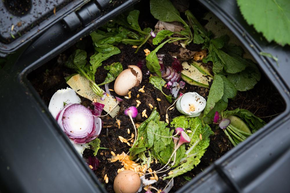 Home Composting Made Easy