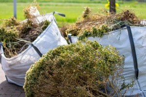 Yard waste in bags ready for disposal