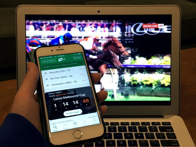 Woman checks online gambling app while watching horse race.