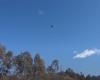 UFO Peter Slattery
