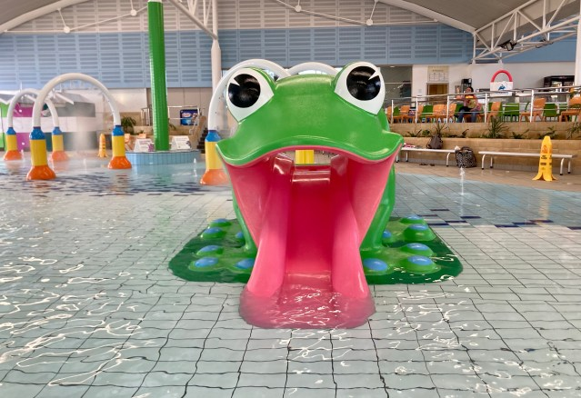 A green frog water slide aids in disabled swimmers.