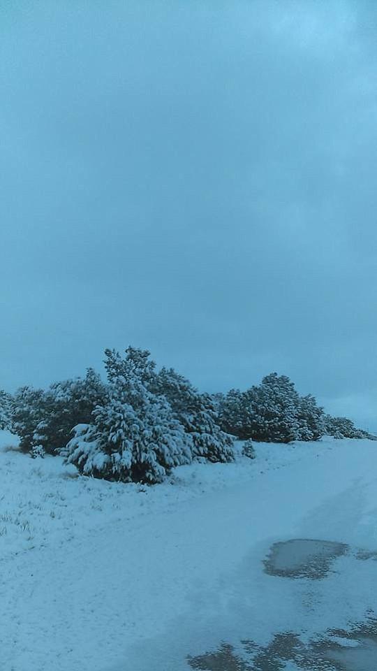 Christmas Day Snow Photos  The Daily Courier  Prescott AZ