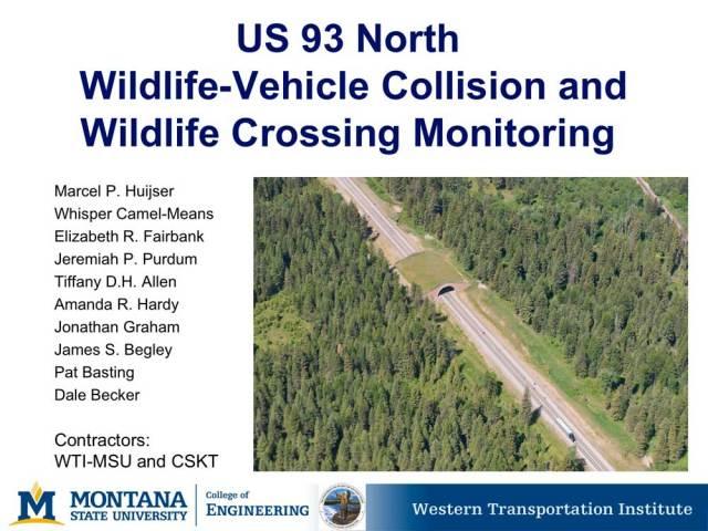 Report, wildlife crossing & collision monitoring US93, Montana