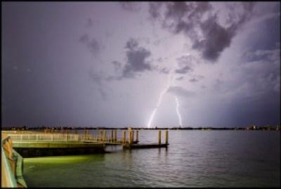 Tampa Lightning & Pet Sitters