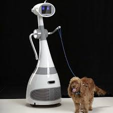 robot dog walker
