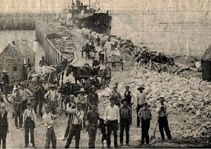 Gypsum at Cheverie wharf