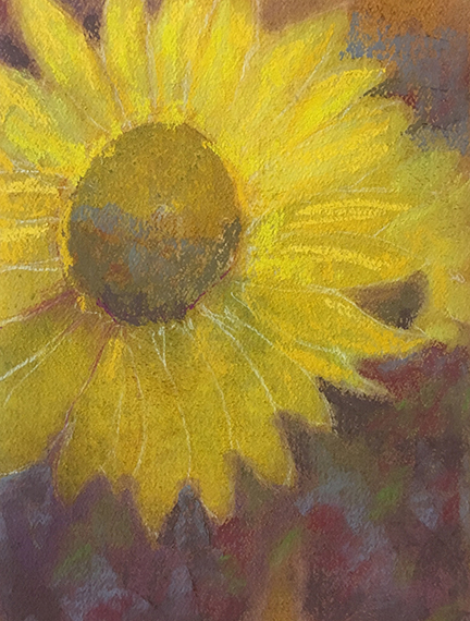 Sunflower pastel on paper