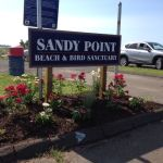 Sandy Point area named 11th-best beach in region
