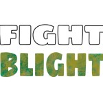 City issues 'blight' reminder
