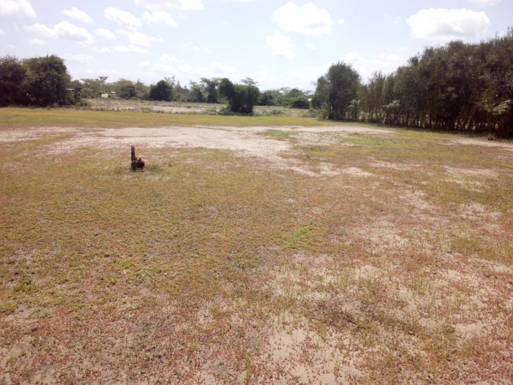 land for sale rabuor