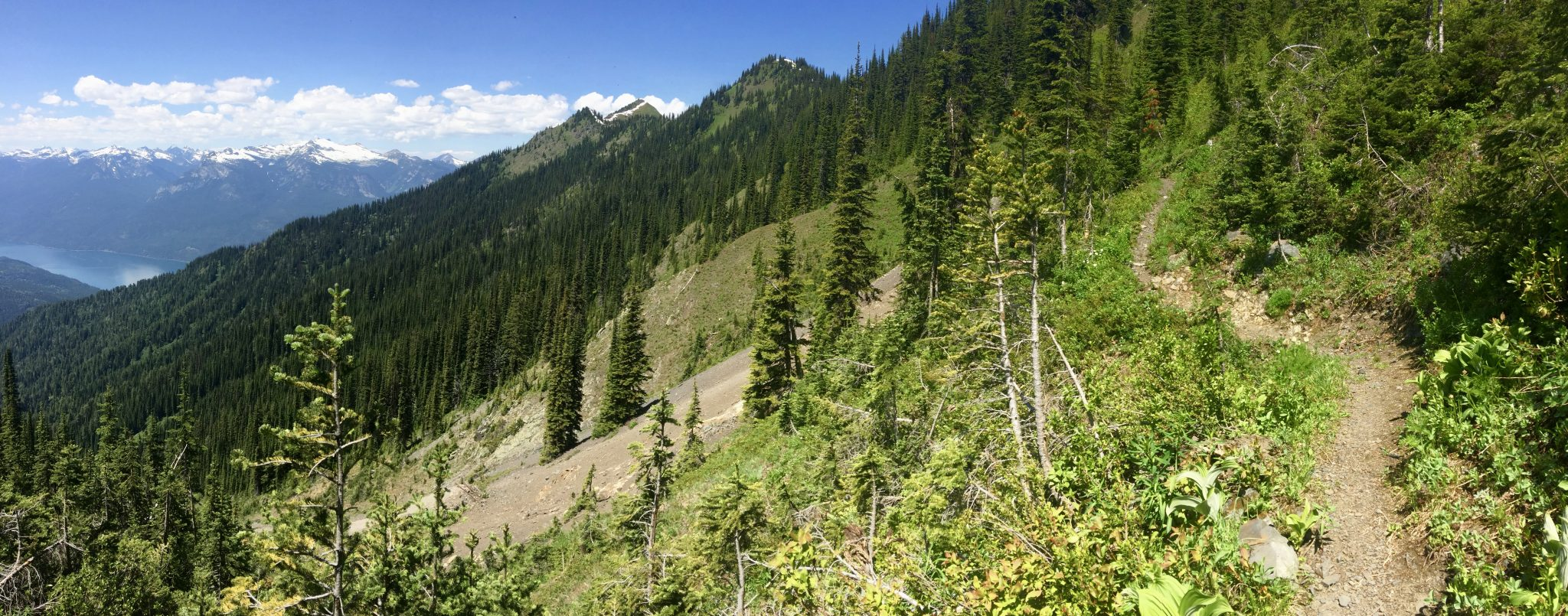 Wakefield Trail – Idaho Peak