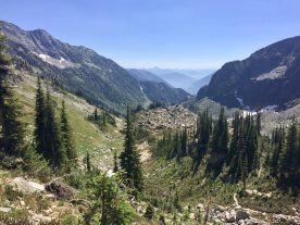 Looking back down Whitewater Canyon, the trail winding away