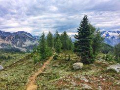 Trail winding along the ridgetop