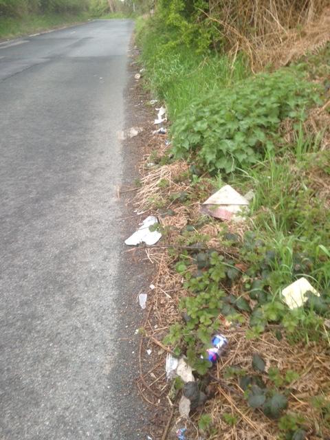 gamble lane rubbish 3