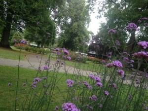 pudsey park flowers