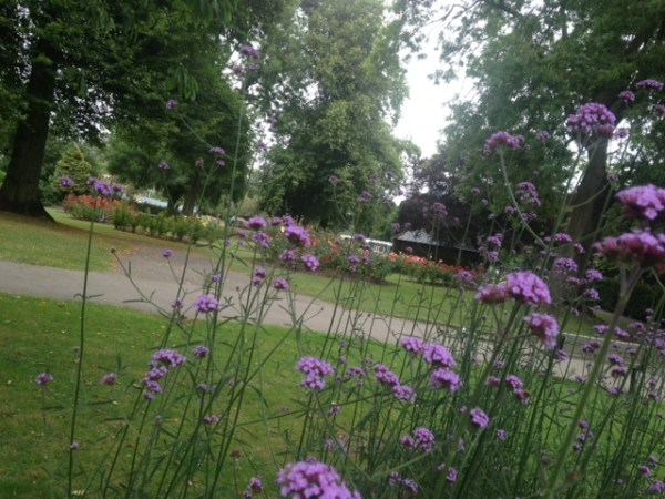 Looking up to the rose garden in Pudsey Park. Photo: West Leeds Dispatch