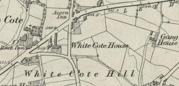 whitecote bramley