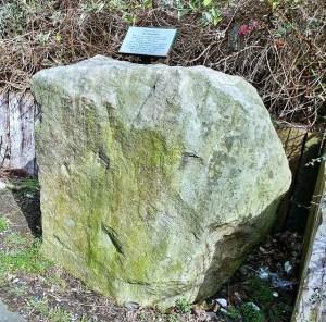 greystone burley