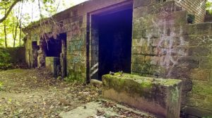 quarry building Bramley falls woods