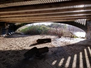 Kirkstall Bridge 1
