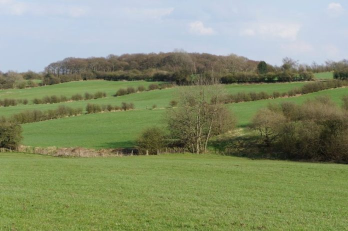 tong fulneck valley