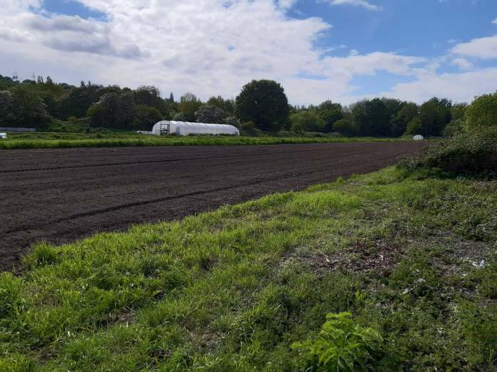 Kirkstall Valley: People-powered farm captures imaginations over summer