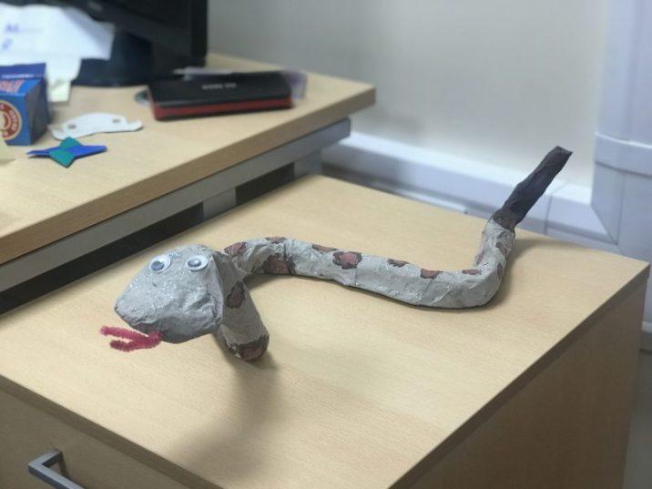 Y5 Snake1